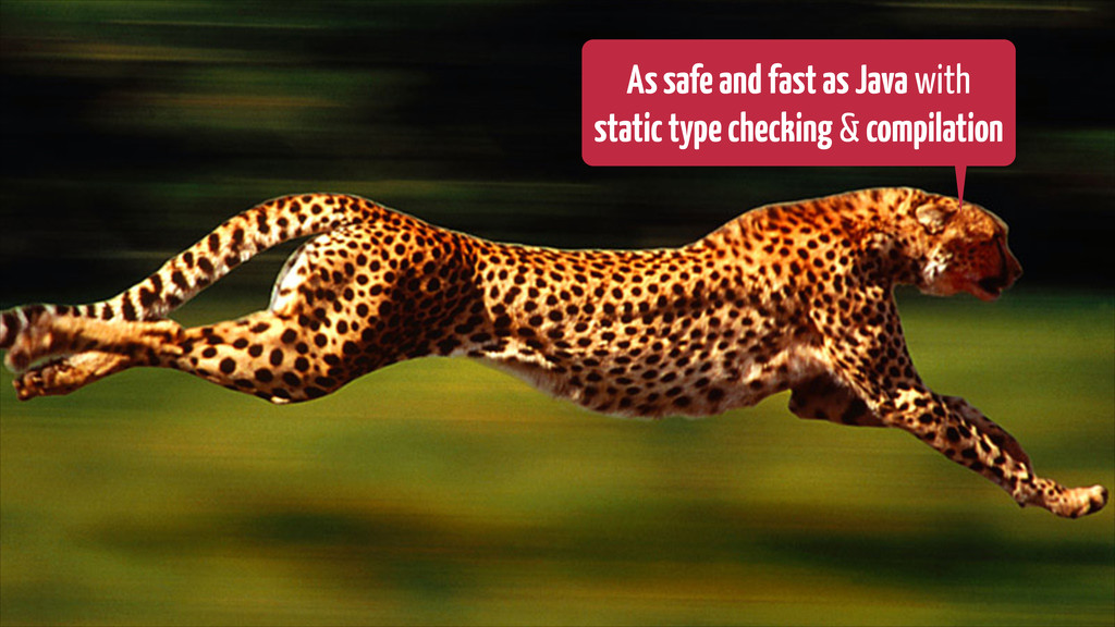 AssafeandfastasJava with statictypechecking & c...