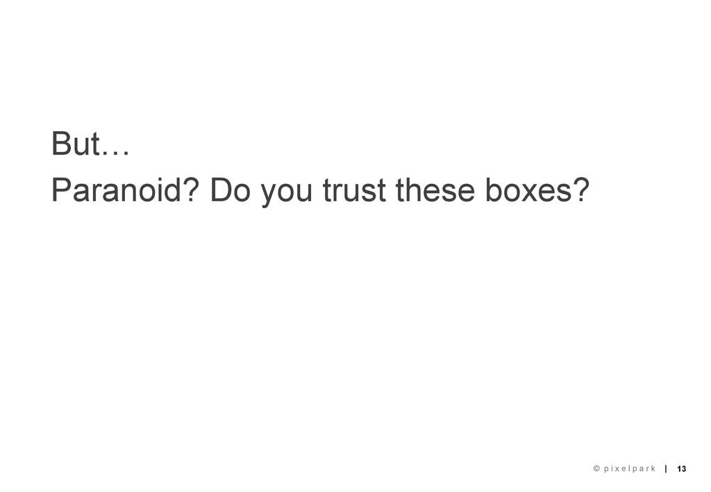 | | 13 © p i x e l p a r k But… Paranoid? Do yo...