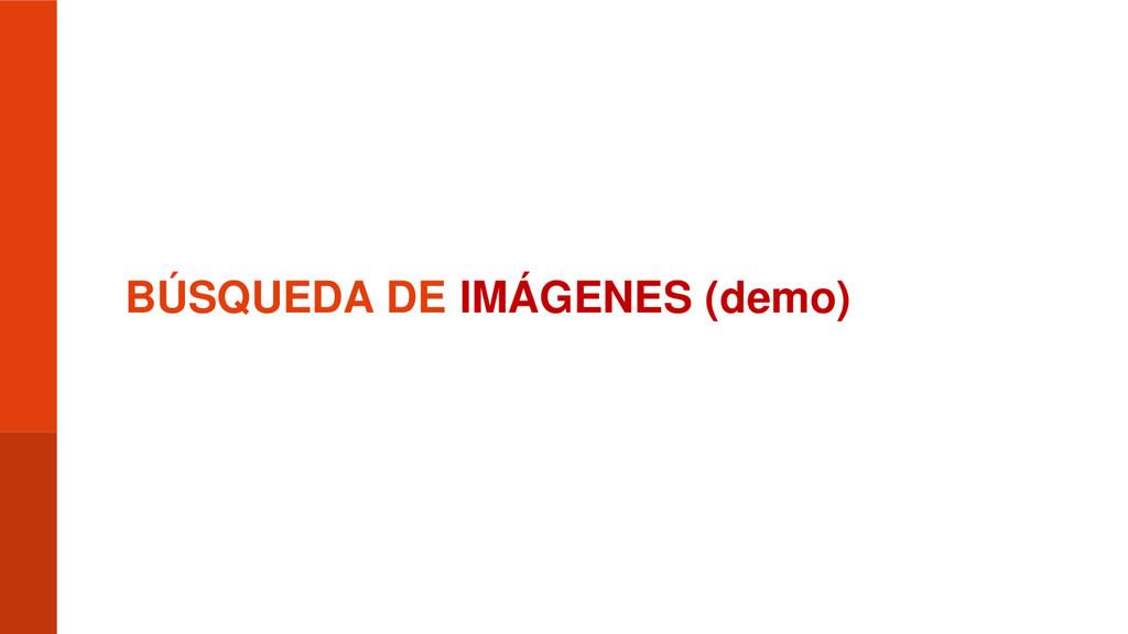BÚSQUEDA DE IMÁGENES (demo)