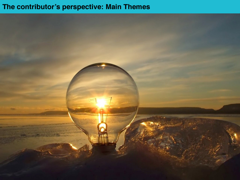 The contributor's perspective: Main Themes