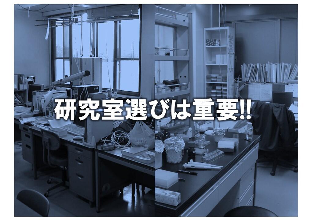 研究室って特別 研究室選びは重要!!
