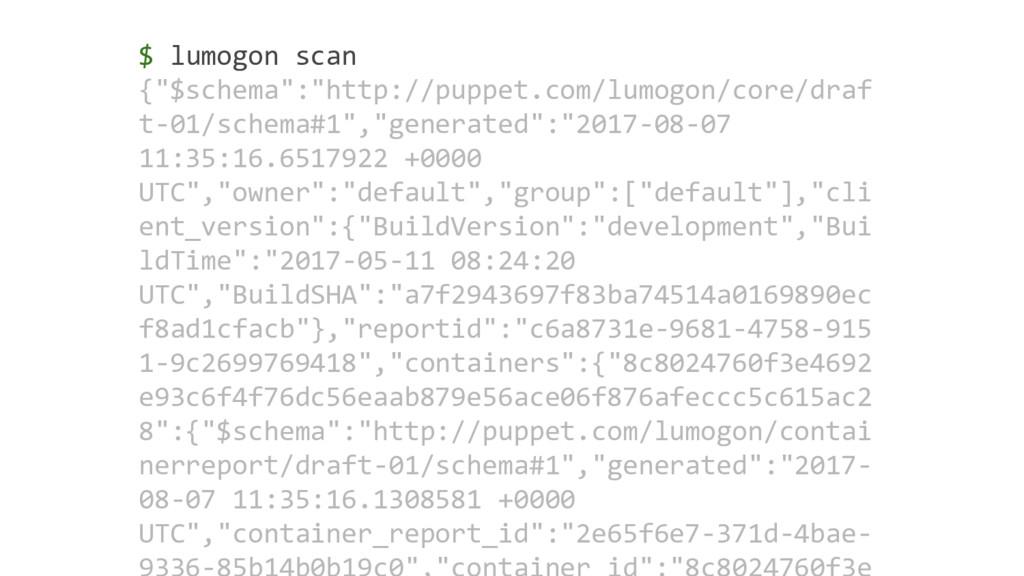 "$ lumogon scan {""$schema"":""http://puppet.com/lu..."