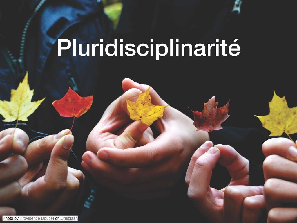 Pluridisciplinarité Photo by Providence Doucet ...
