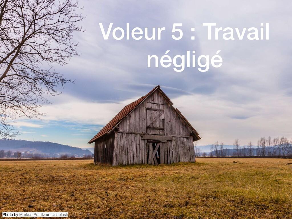 Voleur 5 : Travail négligé Photo by Markus Petr...