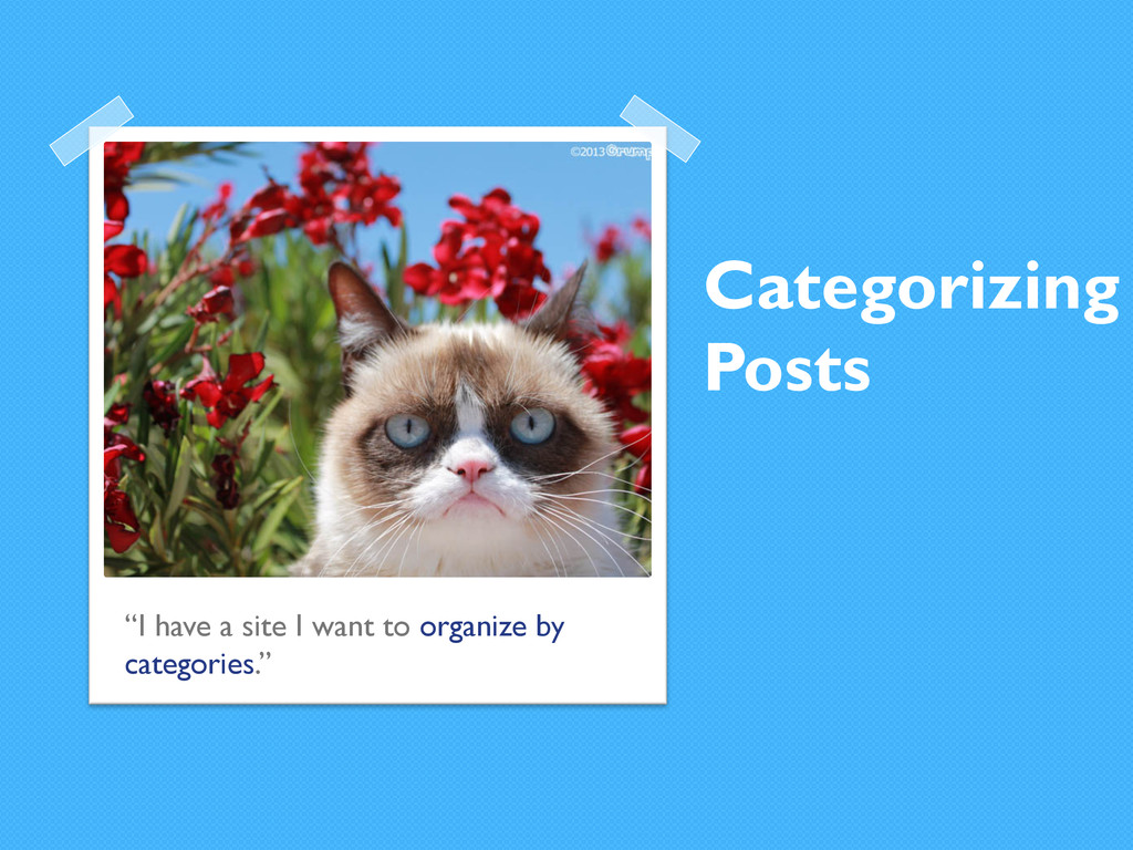 """Categorizing Posts """"I have a site I want to org..."""