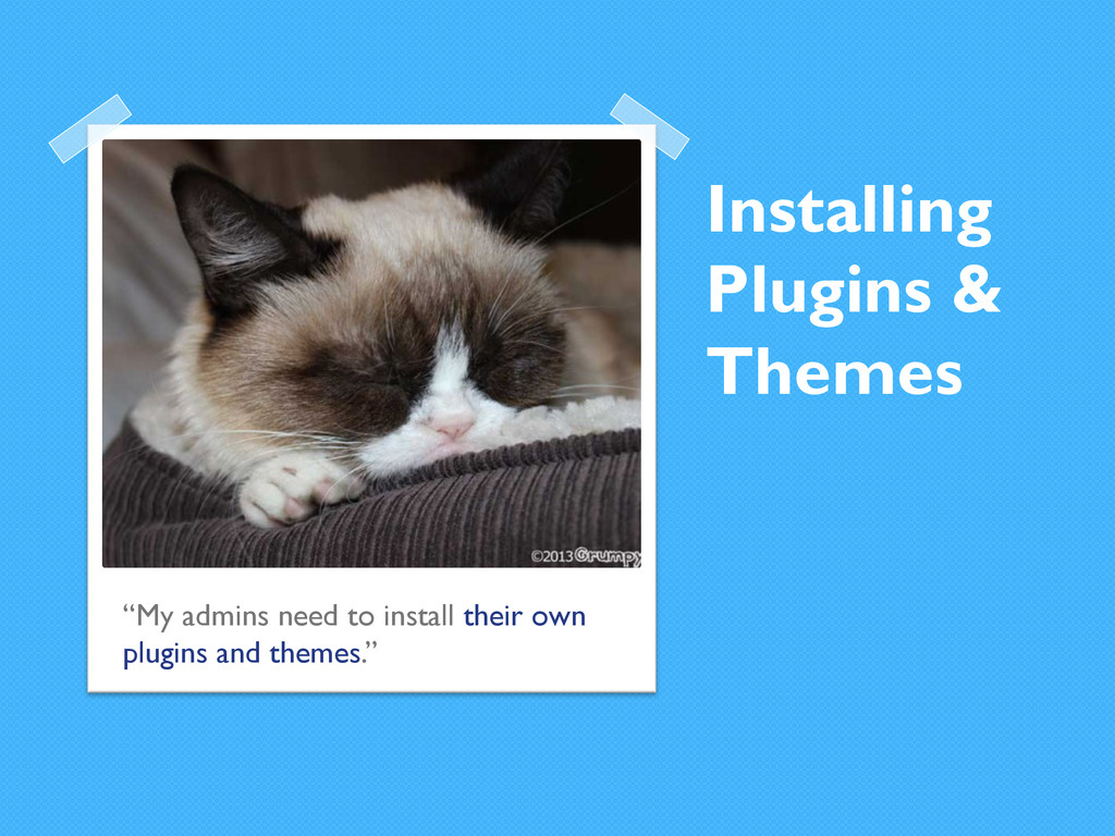 """Installing Plugins & Themes """"My admins need to ..."""