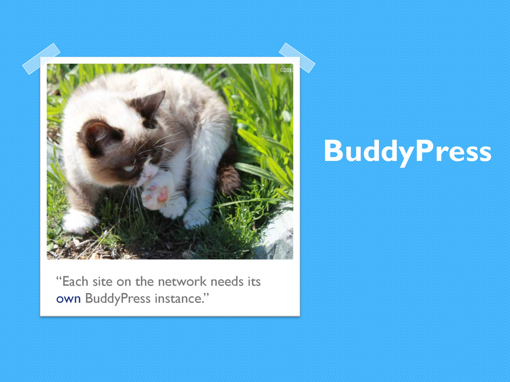 """BuddyPress """"Each site on the network needs its ..."""