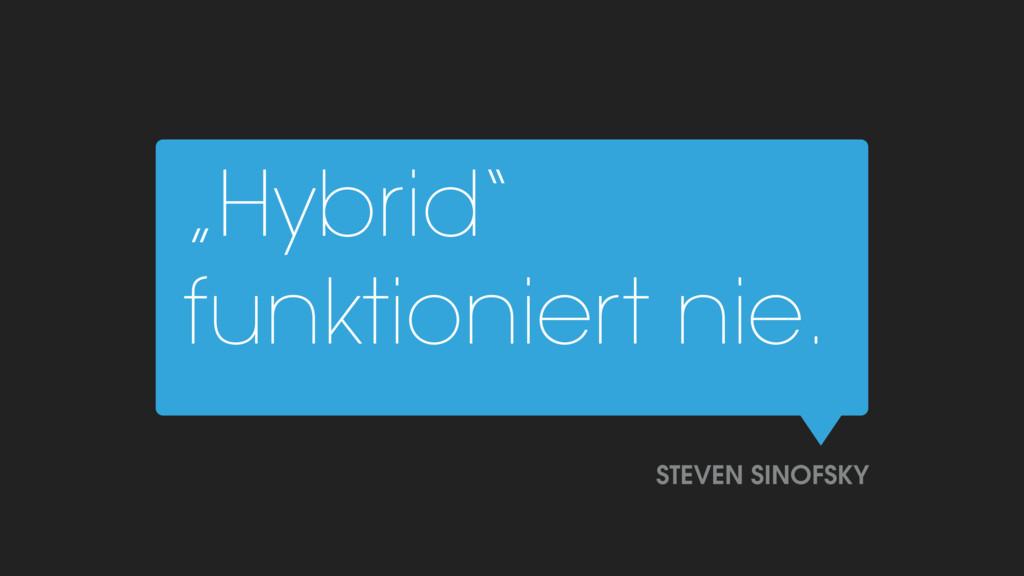 """Hybrid"" funktioniert nie. STEVEN SINOFSKY"