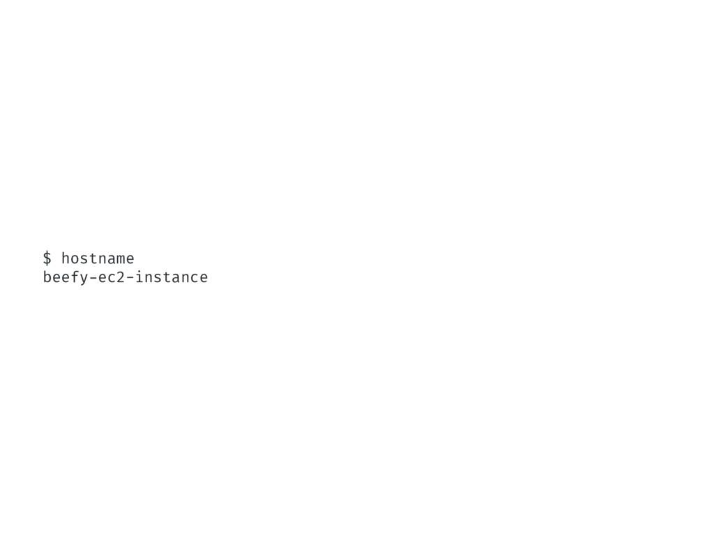 $ hostname beefy-ec2-instance