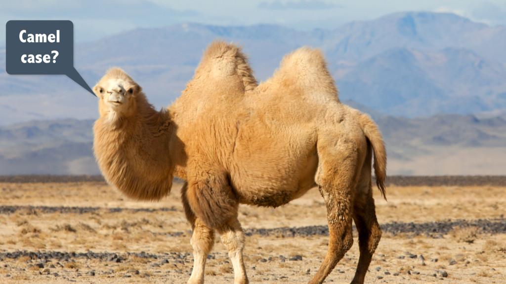 Camel case?