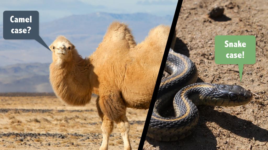 Camel case? Snake case!