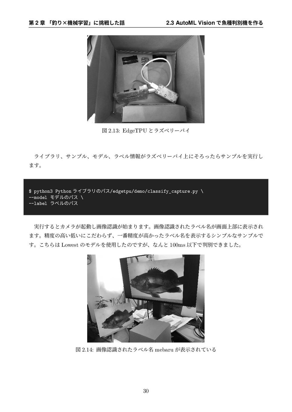 第 2 章 「釣り×機械学習」に挑戦した話 2.3 AutoML Vision で⿂種判別機を...