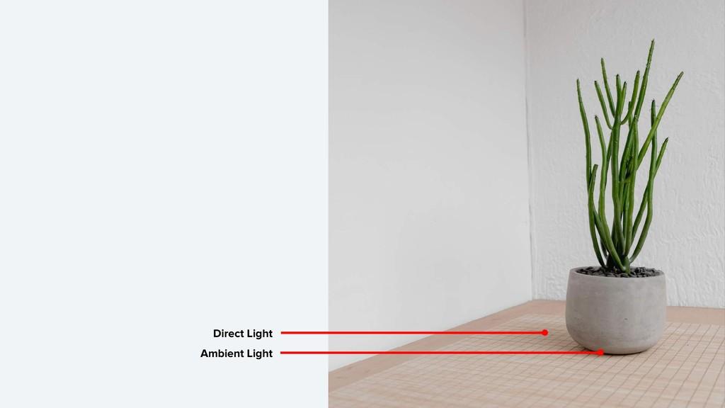 Ambient Light Direct Light