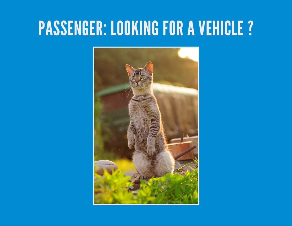 PASSENGER: LOOKING FOR A VEHICLE ?
