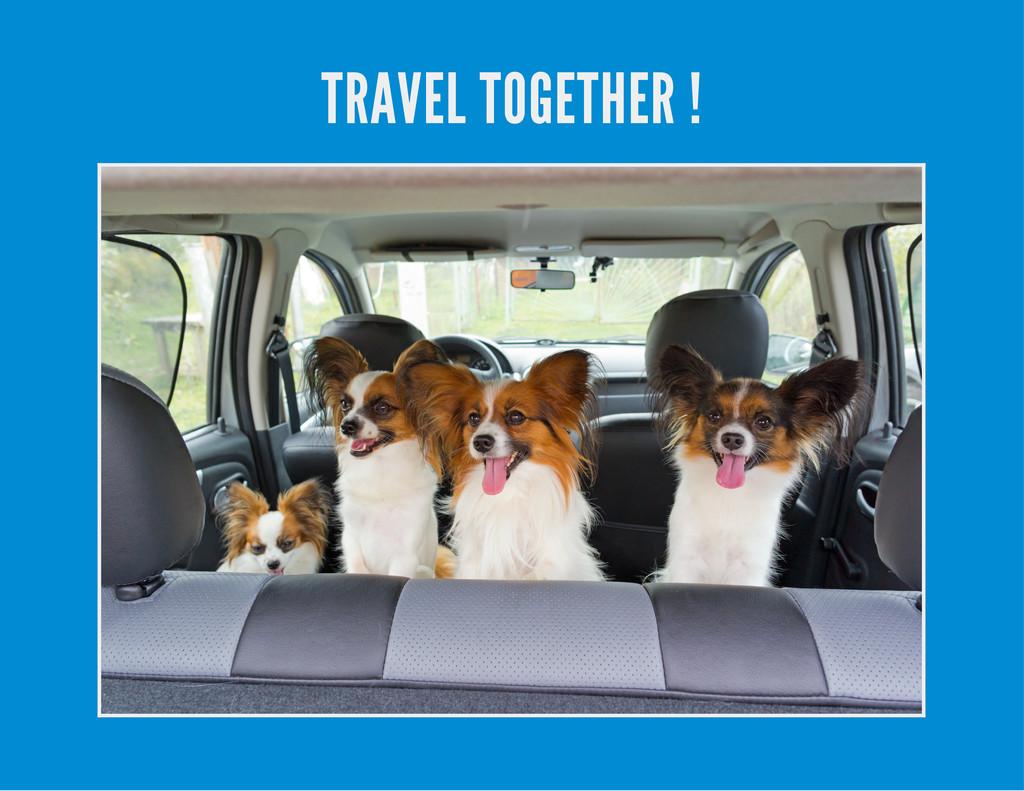 TRAVEL TOGETHER !