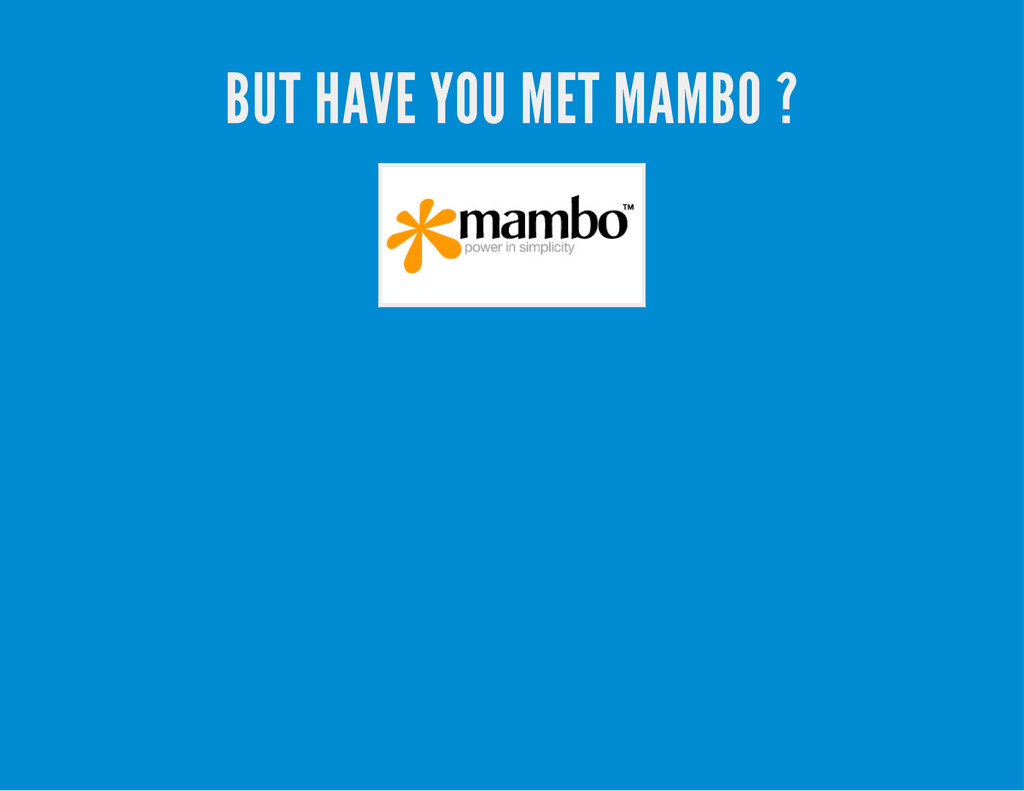 BUT HAVE YOU MET MAMBO ?