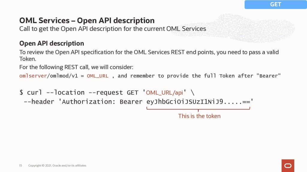 Call to get the Open API description for the cu...