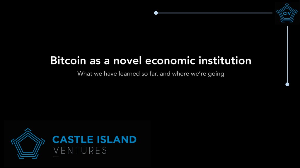 Bitcoin as a novel economic institution What we...
