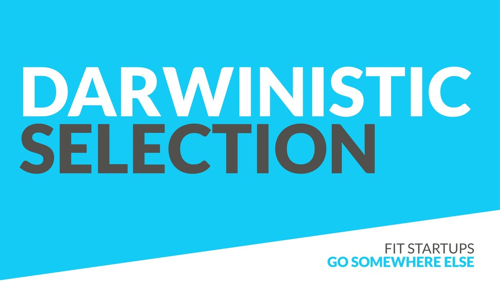 DARWINISTIC SELECTION FIT STARTUPS GO SOMEWHERE...