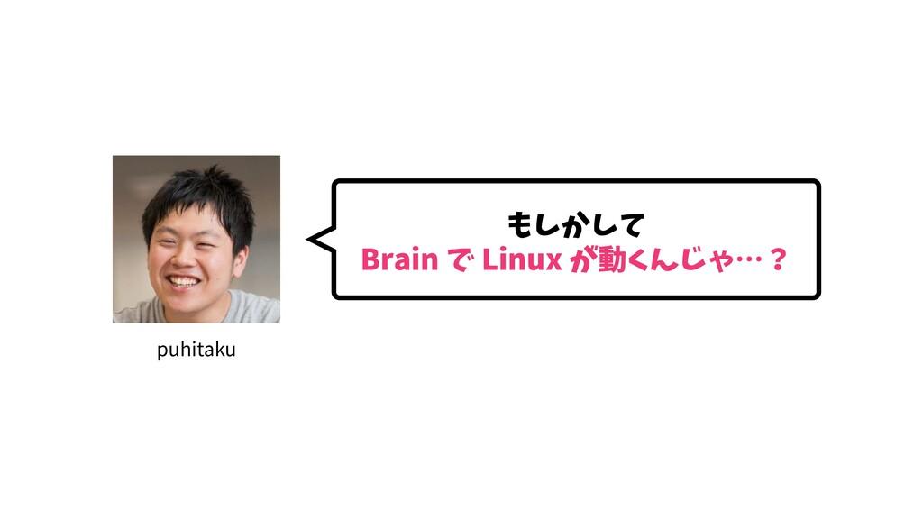 もしかして Brain で Linux が動くんじゃ…? puhitaku