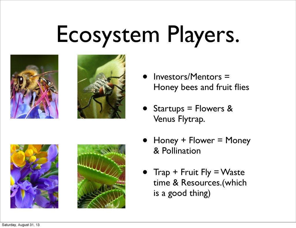 Ecosystem Players. • Investors/Mentors = Honey ...
