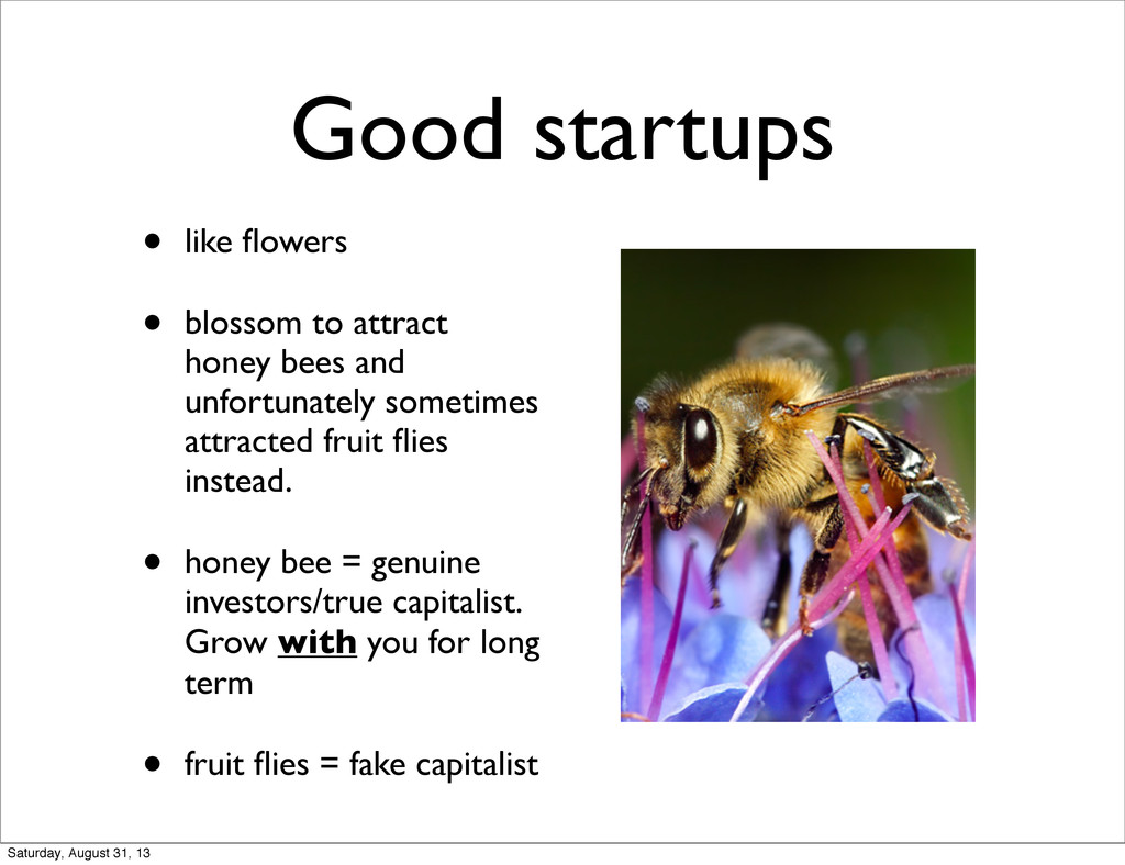 Good startups • like flowers • blossom to attrac...