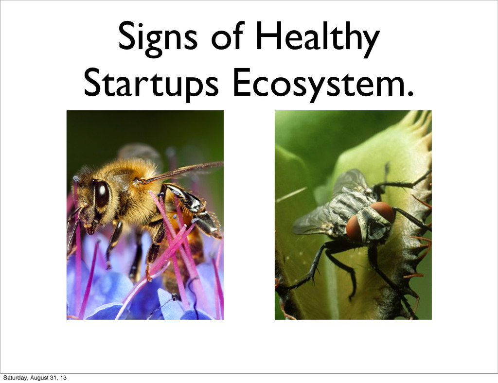 Signs of Healthy Startups Ecosystem. Saturday, ...