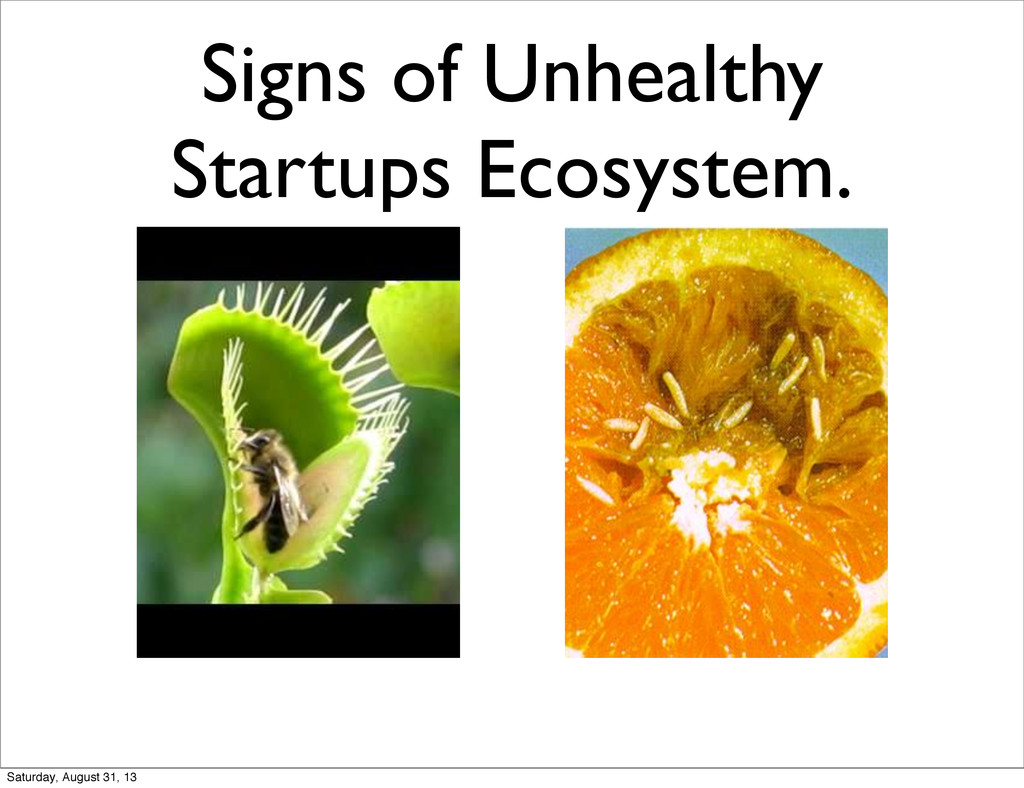 Signs of Unhealthy Startups Ecosystem. Saturday...