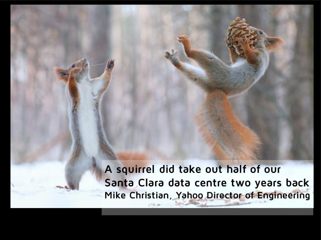 A squirrel did take out half of our Santa Clara...