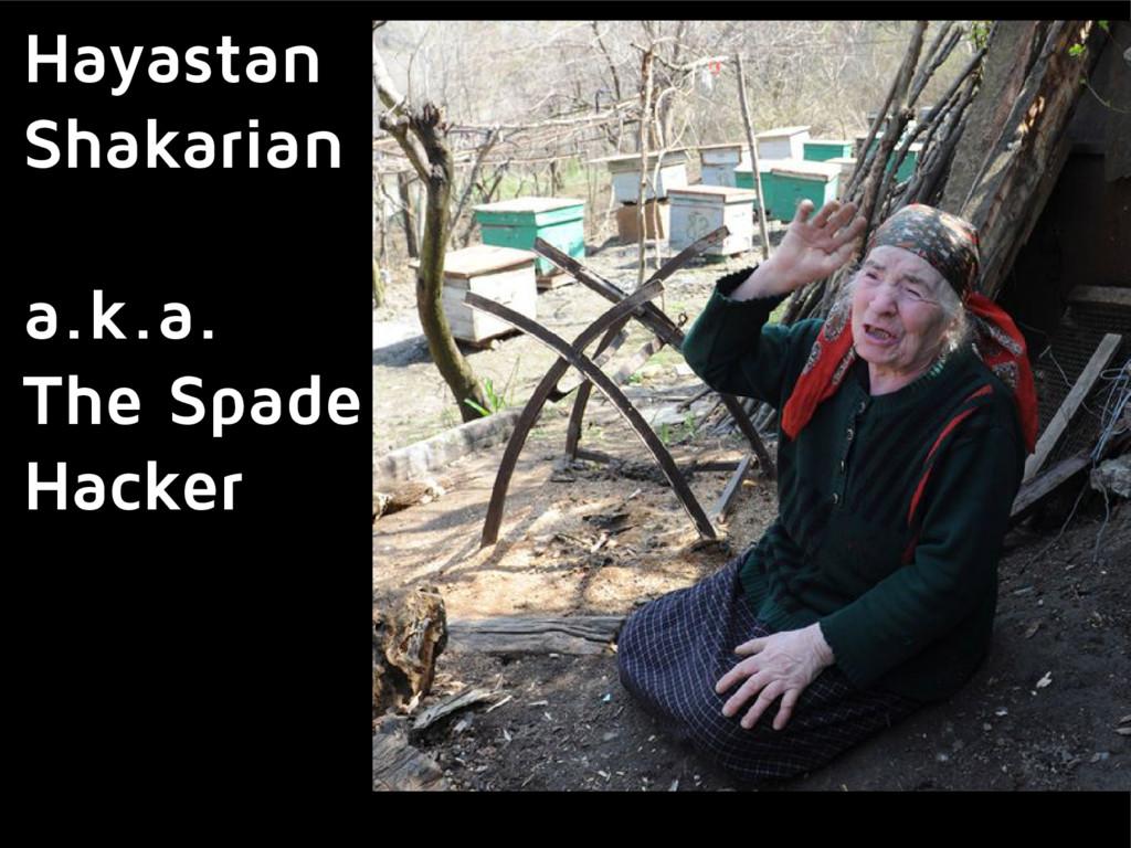 Hayastan Shakarian a.k.a. The Spade Hacker