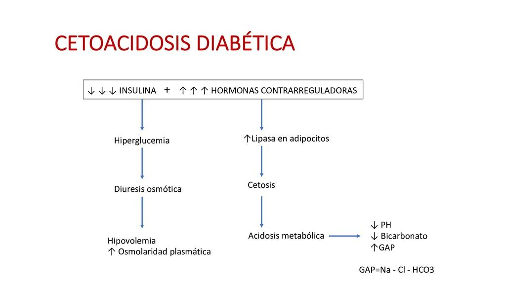 CETOACIDOSIS DIABÉTICA ↓ ↓ ↓ INSULINA + ↑ ↑ ↑ H...