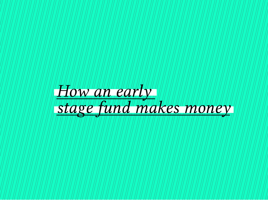 How an early stage fund makes money