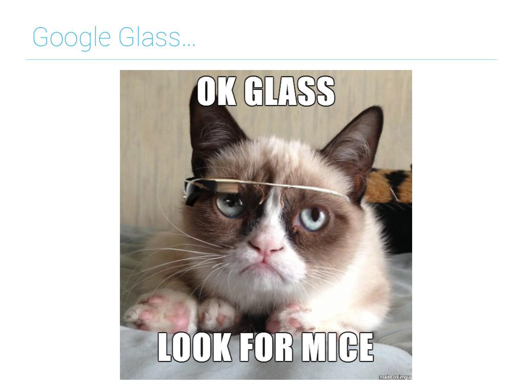 Google Glass…