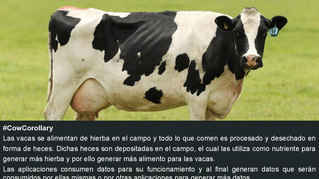 #CowCorollary Las vacas se alimentan de hierba ...