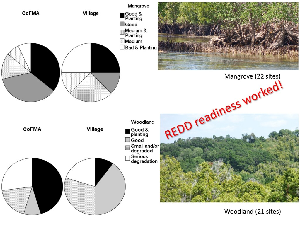 Woodland (21 sites) Mangrove (22 sites) REDD re...