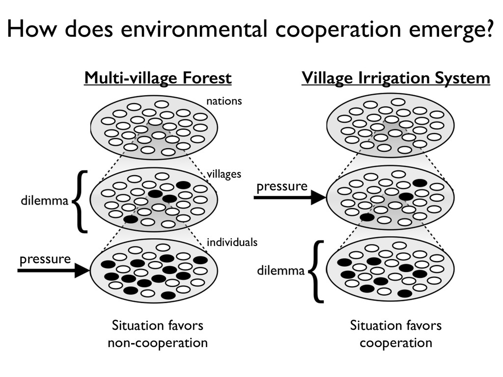 How does environmental cooperation emerge? indi...