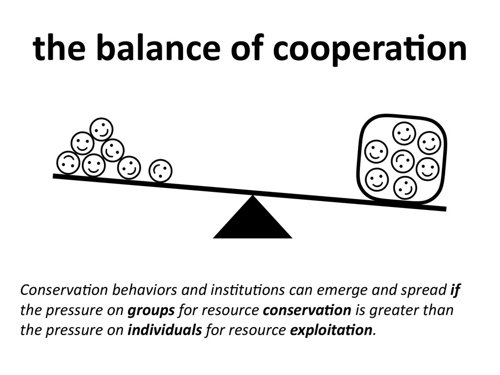 ☺ ☺ ☺ ☺ ☺ ☺ ☺ ☺ ☺ ☺ ☺ ☺ ☺ ☺ the balance of coop...