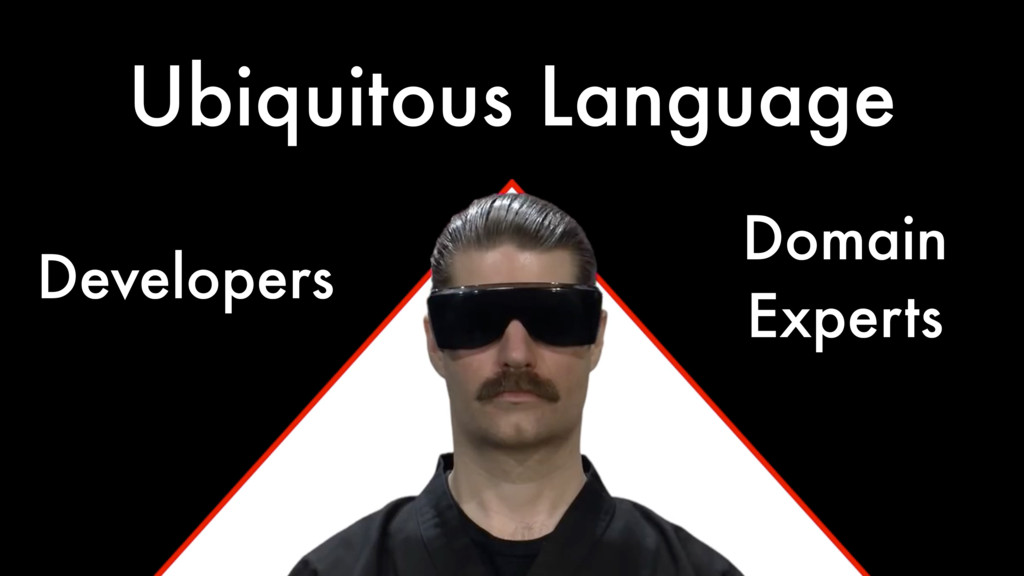 Ubiquitous Language Developers Domain Experts