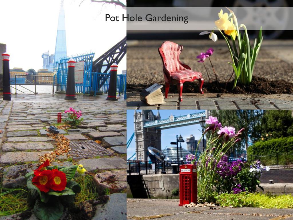 Pot Hole Gardening