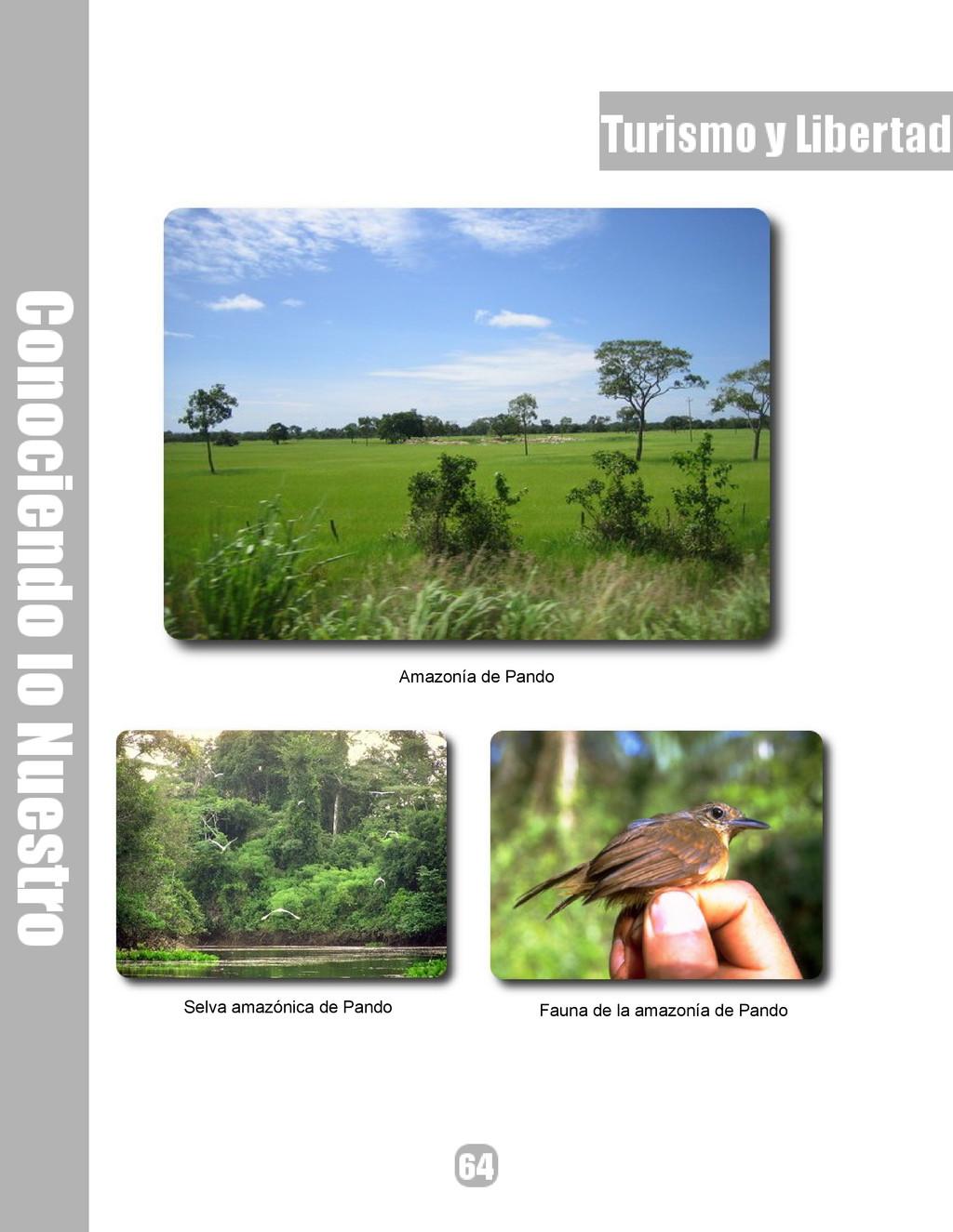 Amazonía de Pando Selva amazónica de Pando Faun...
