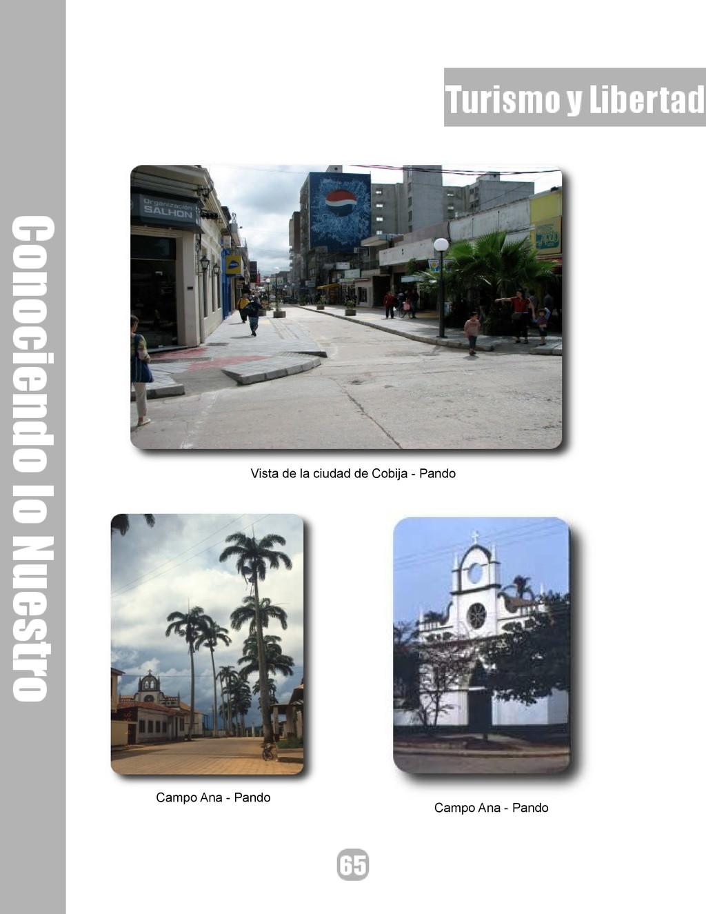 Vista de la ciudad de Cobija - Pando Campo Ana ...