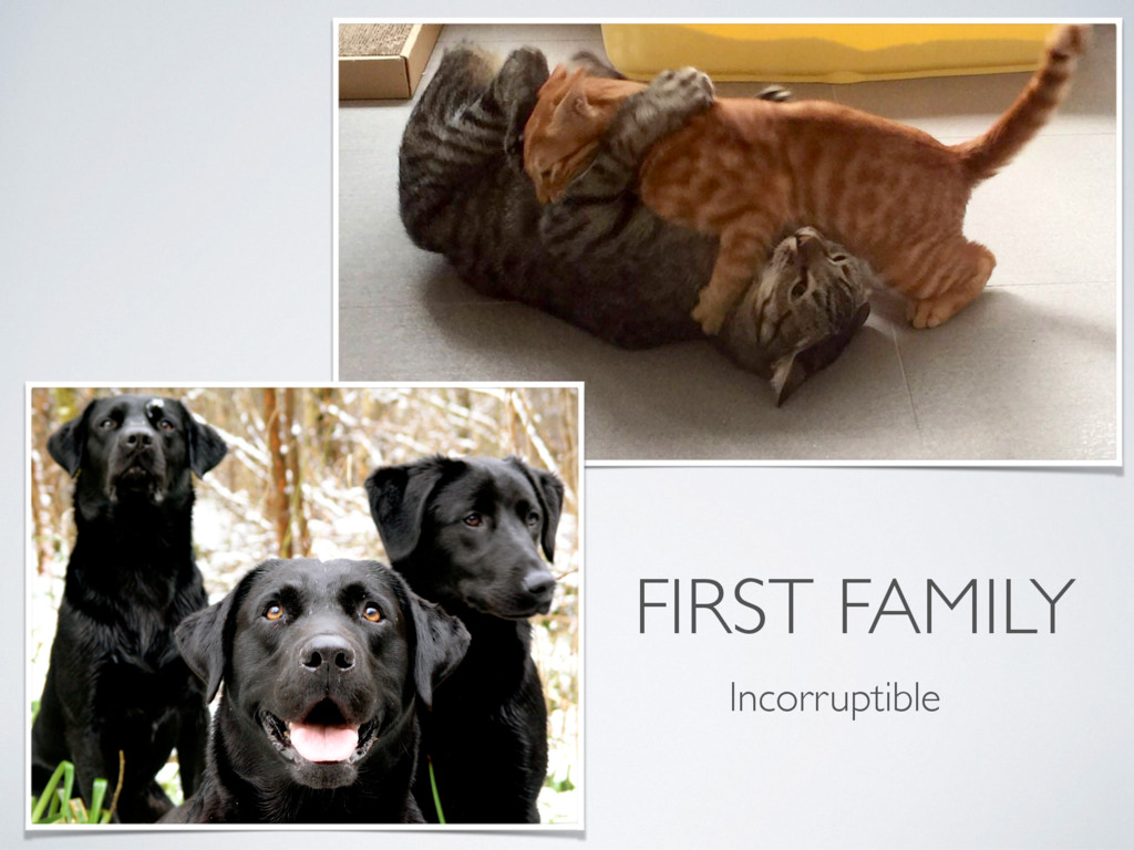 FIRST FAMILY Incorruptible