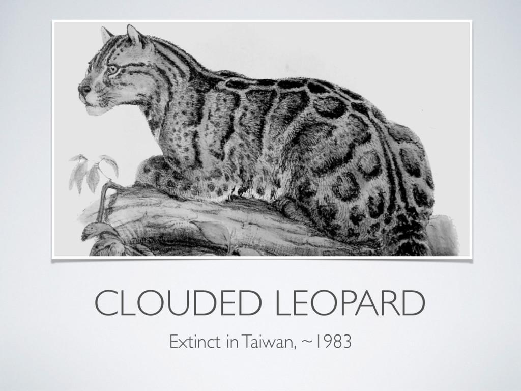 CLOUDED LEOPARD Extinct in Taiwan, ~1983