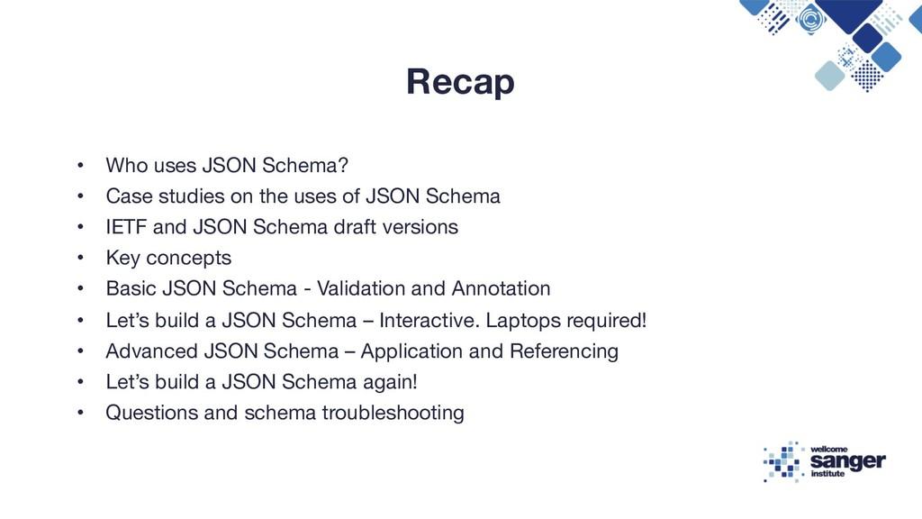 Recap • Who uses JSON Schema? • Case studies on...