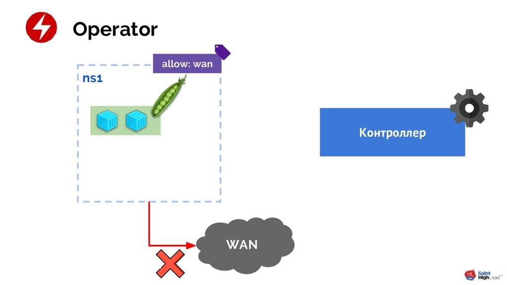 ns1 Контроллер Operator WAN allow: wan