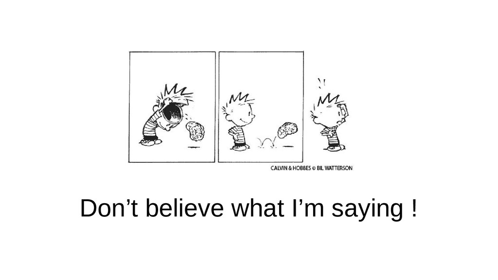 Don't believe what I'm saying !
