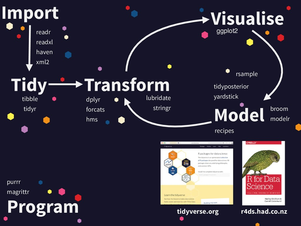 Tidy Import Visualise Transform Model Program t...