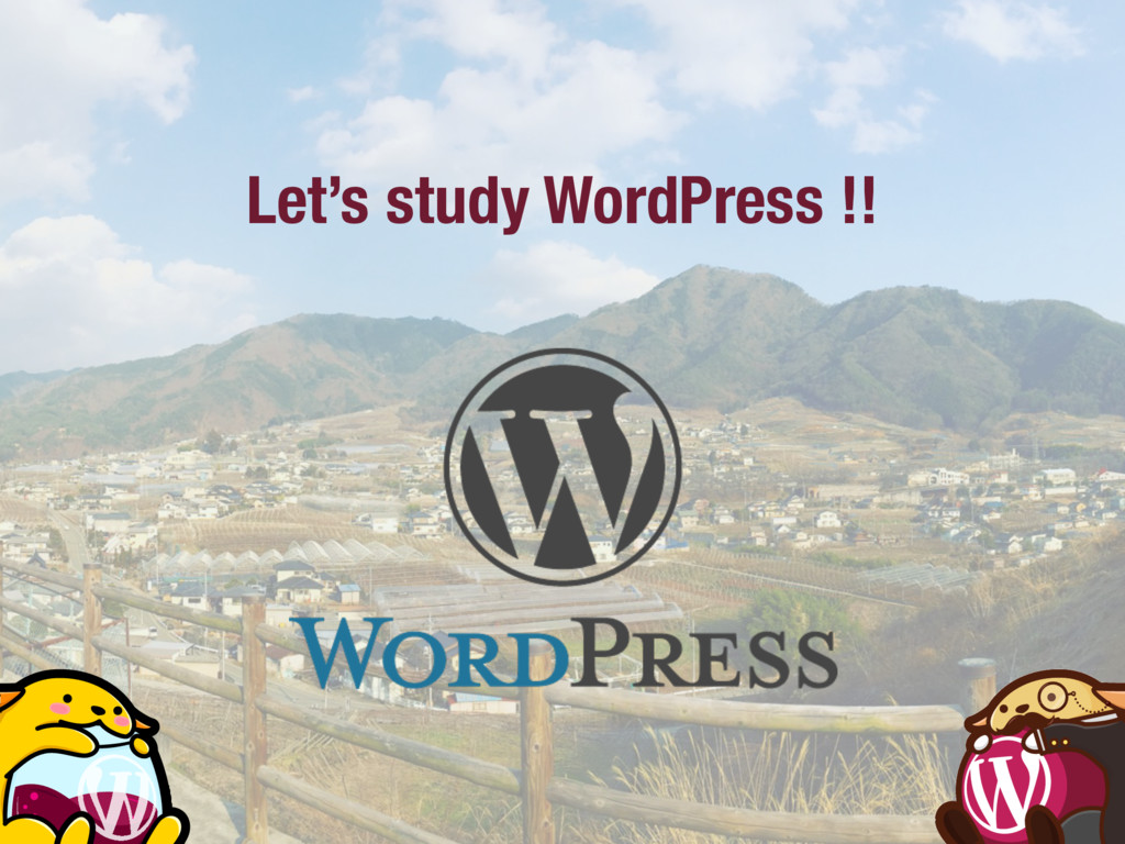 Let's study WordPress !!