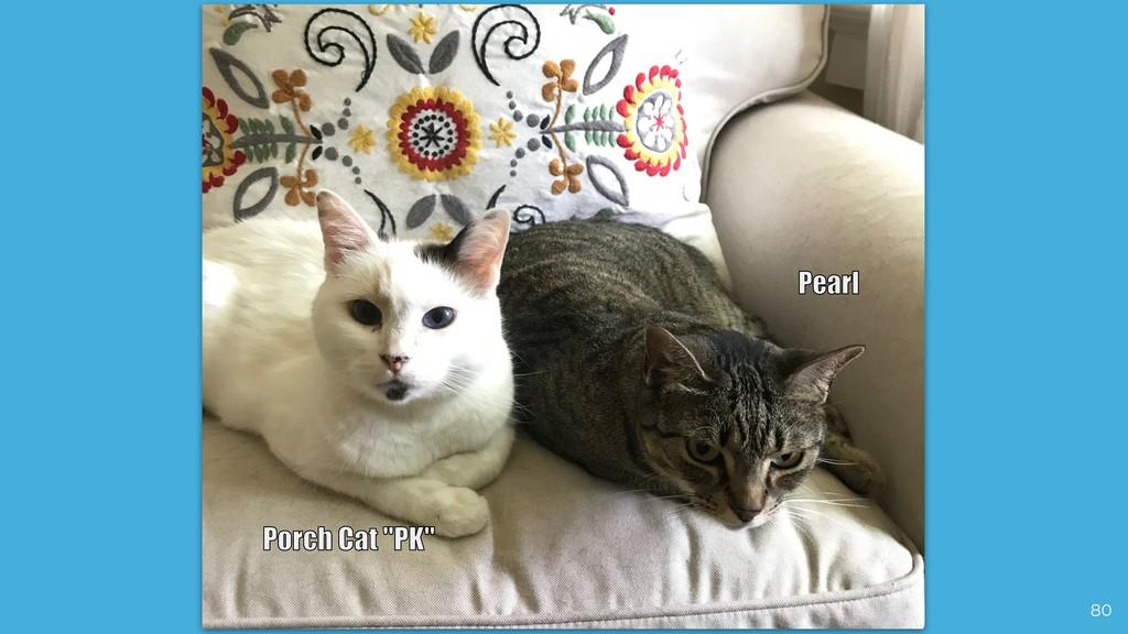 """80 Porch Cat """"PK"""" Pearl"""