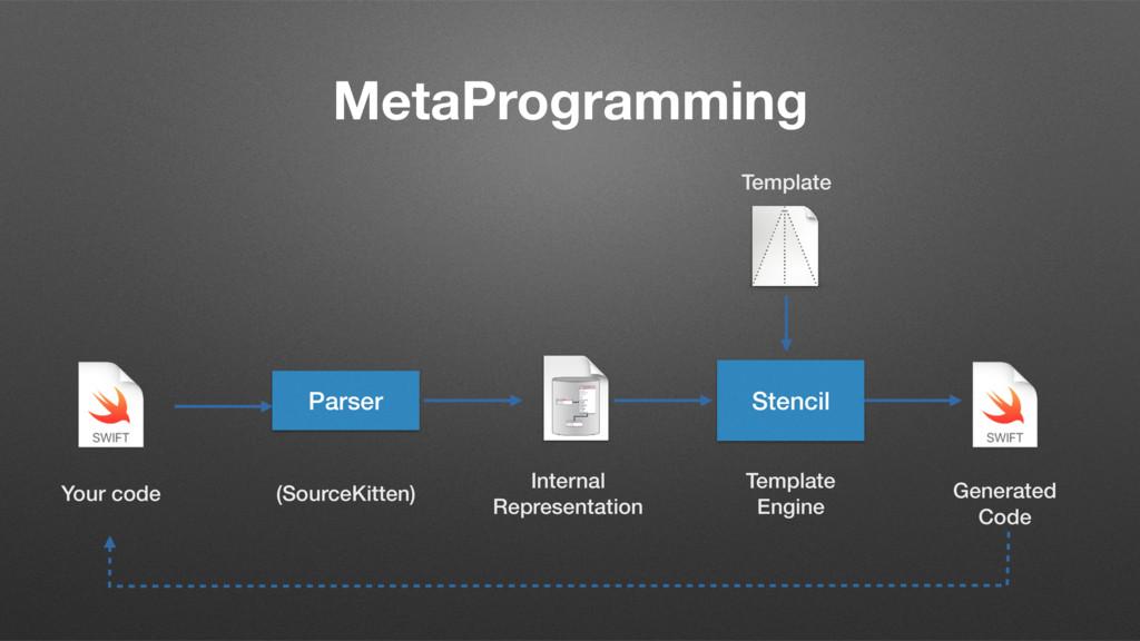 MetaProgramming Parser Internal Representation ...